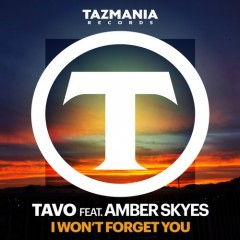 Tavo ft/Amber Skyes – I Won't Forget You